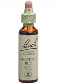 BACH-BLÜTEN Original Chestnut Bud No07 20 ml