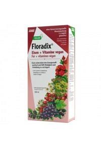 FLORADIX VEGAN Eisen + Vitamine Saft Fl 500 ml