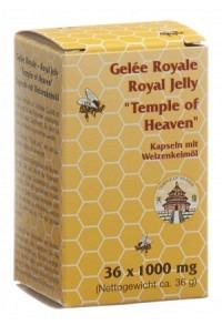 GELEE ROYALE Royal Jelly Kaps ToH 36 Stk
