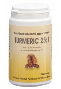 TURMERIC 25:1 Tabl 250 mg Ds 300 Stk