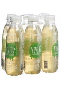 VIVITZ Bio Eistee Grüntee 6 x 0.5 lt