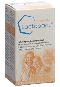 LACTOBACT PREMIUM Kaps Ds 60 Stk