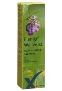 FLAMIX Wallwurz Gel Tb 100 ml