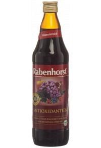 RABENHORST Antioxidantien Saft Bio 7.5 dl