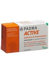 PADMA 28 active Kaps 100 Stk
