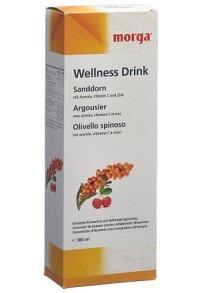 MORGA Sanddorn Wellness Drink Fl 380 ml