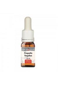 NATURSTEIN Propolis Tinktur Fl 10 ml